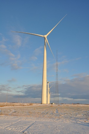 A picture of the wind turbines at the test centre in Høvsøre